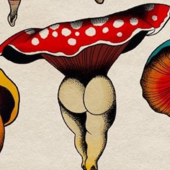 baubo mushroom
